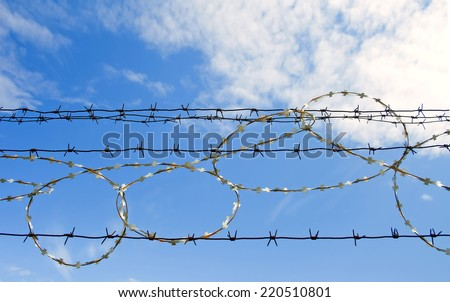 Tangle barb wire. Rusty barbed fence and blue sky. Symbol of opposition - stock photo
