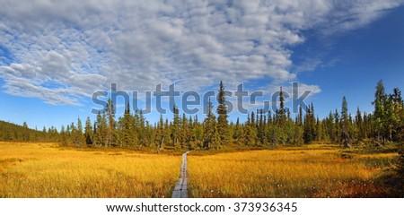 Tankavaara, the boardwalk in Urho Kekkonen National Park. It is one of the major national park in Lapland, Finland - stock photo