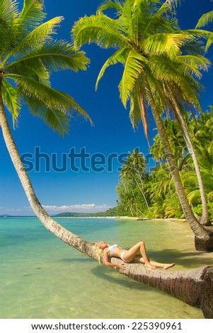 Tanning Pleasure In a Coconut Grove  - stock photo