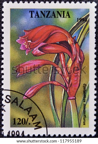 TANZANIA - CIRCA 1994: A stamp printed in Tanzania dedicated to tropical flowers, shows cyrtanthus minimiflorus, circa 1994