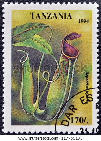 TANZANIA - CIRCA 1994: A stamp printed in Tanzania dedicated to tropical flowers, shows nephenthes hybrid, circa 1994