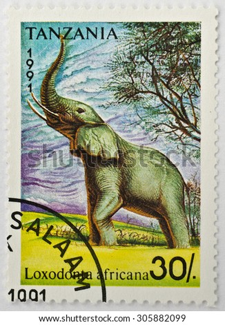 TANZANIA - CIRCA 1991: a 30 Tanzania Shilling stamp printed in Tanzania shows image of an African bush elephant (Loxodonta africana), series, circa 1991.  - stock photo