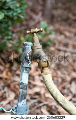Tap and hose - stock photo