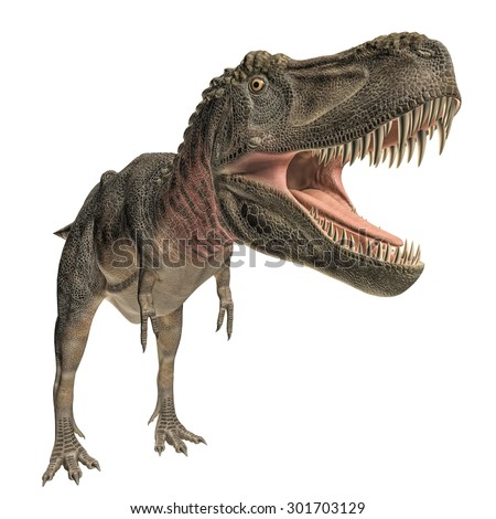 Tarbosaurus isolated on white background - stock photo