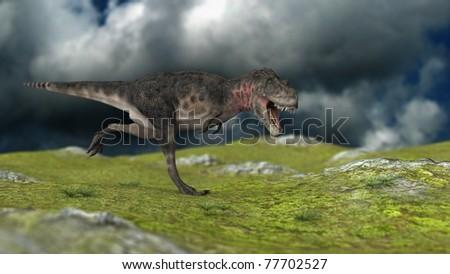 tarbosaurus running on hills - stock photo
