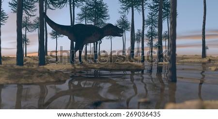 tarbosaurus walking in araucaria grove - stock photo