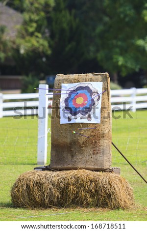 target of arrow on green grass field - stock photo