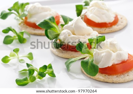 Tarts with tomato and cheese, finger food