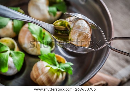 Tasting hot and fresh snails - stock photo