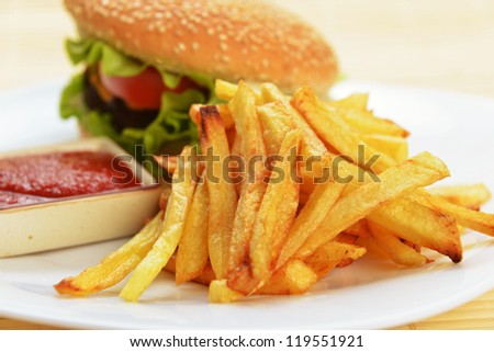 Tasty and appetizing hamburger with fries on white plate