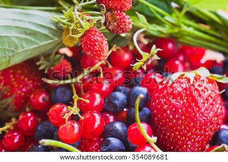 Tasty and healthy berries -red currants, strawberries and blueberries .Selective focus - stock photo