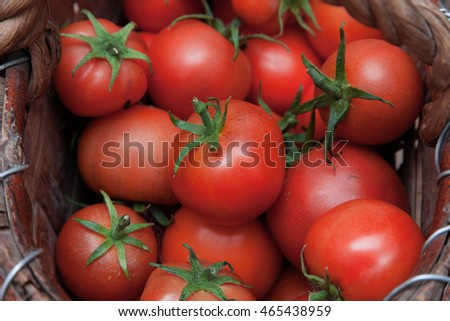 Tasty and ripe red tomatoes