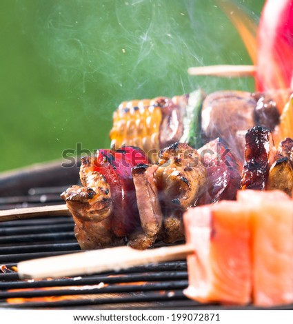 Tasty beef, salmon and vegetable skewers on garden grill, close-up. - stock photo