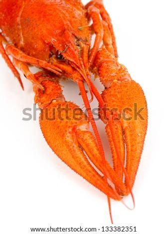 Tasty boiled crayfish isolated on white - stock photo