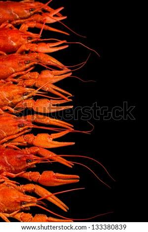Tasty boiled crayfishes isolated on black - stock photo