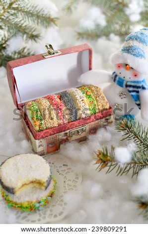Tasty Christmas cookies in a festive box is on snow - stock photo