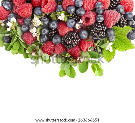 tasty forest berries with flowering plant isolated on a white background - stock photo
