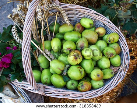 Tasty green organic apples in basket in the market    - stock photo