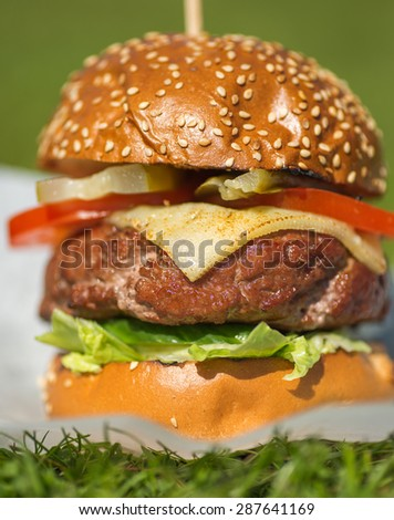 Tasty grilled burger on a green  grass. tasty summer symbol. Selective focus - stock photo