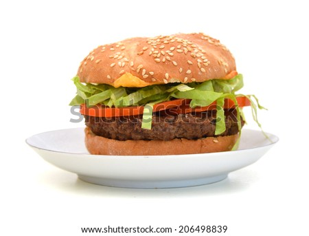 Tasty hot hamburger with onion, meat, tomatoes and salad in white plate  - stock photo