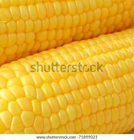 Tasty kitchen. Fresh corn closeup - stock photo