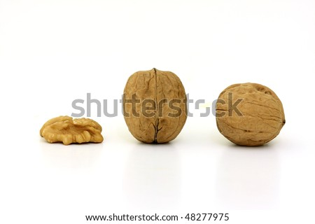Tasty nuts in a row in a white background
