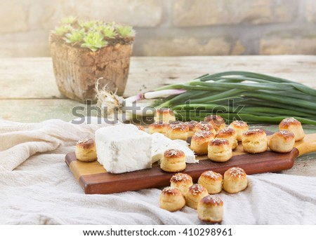 Tasty plate with cheese, pastry and onions - stock photo
