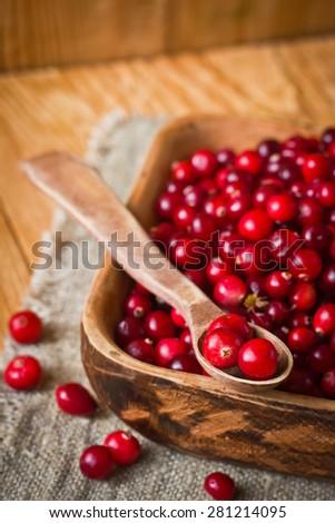 Tasty ripe cranberries - stock photo