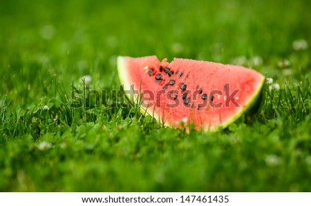 tasty ripe watermelon on the grass - stock photo