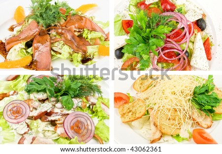 Tasty salad dishes collection on a white background