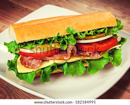 Tasty sandwich on the table