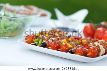 Tasty shishkebabs made from chicken and vegetables - stock photo