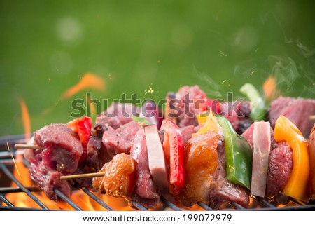 Tasty skewers on garden grill, close-up. - stock photo