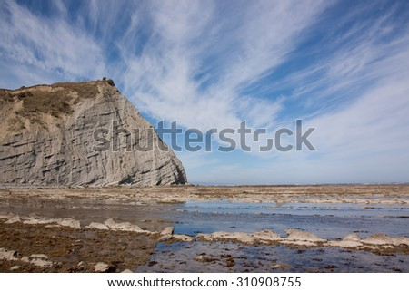 Tatapouri by the Sea headland and seaweed covered reef near Gisborne, East Coast, North Island, New Zealand on a blue, sunny day with streaky cloud formations  - stock photo