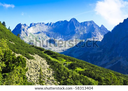 Tatra in summer with green forest, Slovakia - stock photo