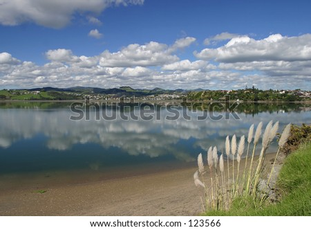 Tauranga Harbour, New Zealand - stock photo