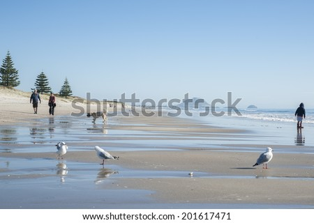 TAURANGA, NEW ZEALAND - JUNE 29: People enjoying a fine winter day at a scenic beach on June 29, 2014 at Tauranga, New Zealand. - stock photo