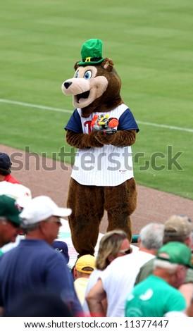 TC Bear, Minnesota Twins baseball mascot, spring training - stock photo
