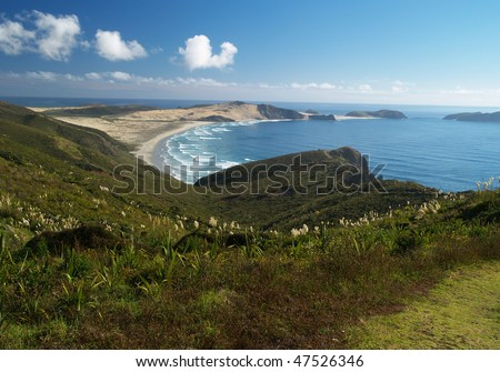 Te Werahi beach, Far North, New Zealand