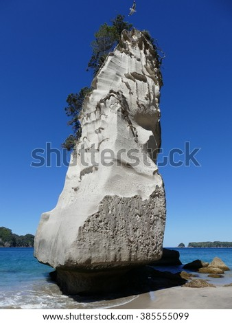 Te Whanganui-A-Hei (Cathedral Cove) Marine Reserve is on the Coromandel Peninsula in New Zealand.