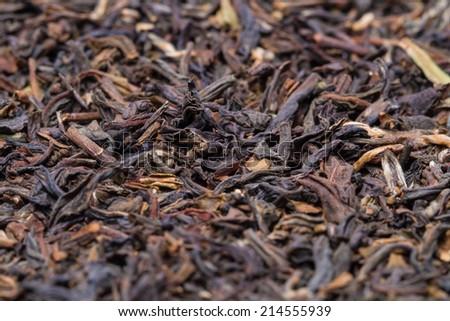 tea leaves of darjeeling - stock photo