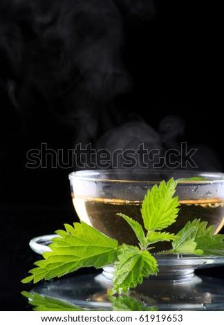 tea nettle - stock photo