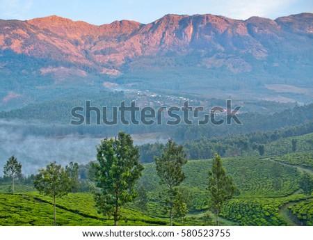 Tea Plantations Munnar Kerala South India Stock Photo - Metres above sea level