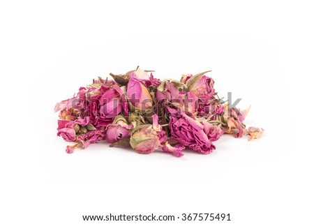 Tea rose flowers on a white background - stock photo