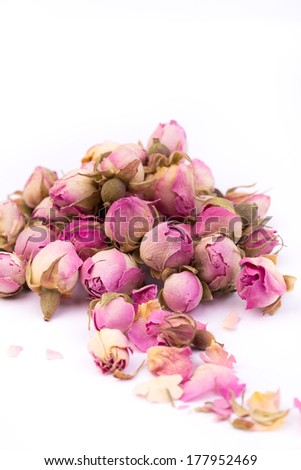 Tea rose flowers on white background - stock photo