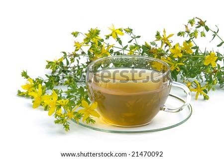tea St Johns wort - stock photo