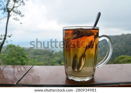 Tea time and View - stock photo