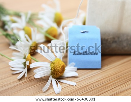 tea with camille - stock photo