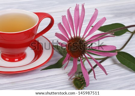 Tea with Echinacea in a red cup on the table - stock photo