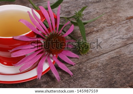 Tea with Echinacea on an old wooden table - stock photo